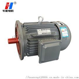 山东盛华YE3 200L四极30KW  效率电动机
