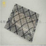 蘇州廠家直銷網格導電袋防靜電電子產品包裝袋PE防潮袋