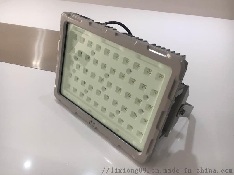 LED免維護防水防腐照明燈