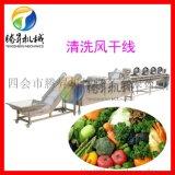 定製淨菜加工流水線 蔬菜配送中心生產設備