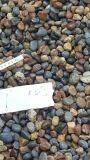 河南變壓器鵝卵石 永順園林鵝卵石多少錢