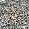 本格厂家供应园林鹅卵石 建筑鹅卵石 铺路鹅卵石