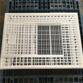 方形塑料鸡笼子 塑料鸡笼子厂家 高质量塑料鸡笼子