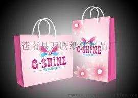 浙江温州苍南印刷生产厂家批发低价格加工定制 白卡纸 扁平袋 手提袋 纸袋