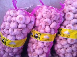 大蒜网袋带熊猫商标网眼袋装40斤大蒜网袋
