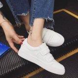 王菲同款小白鞋厂家直销