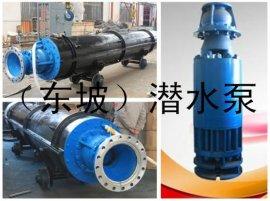 天津不锈钢立式深井潜水泵生产厂家-卧式大型潜水电泵-立式潜水泵厂家