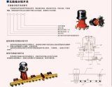 WSP-II-63/12-6*5變壓器配件-無勵磁分接開關-華強電力配件