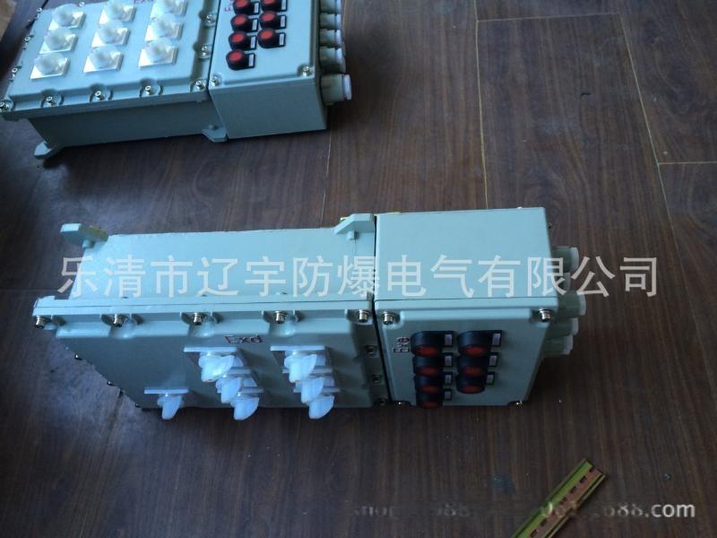 防爆照明动力配电箱 IIB IIC 根据图纸定做 厂家直销 多回路