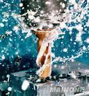 环保防锈清洗剂(YS201、YS201C)