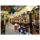 500升玫瑰金一拖七 自酿精酿啤酒设备商用一体机