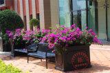 户外广场落地铁艺花箱种植花卉架定制公园景区花箱花槽