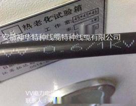VV-1*10 电力电缆