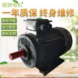 三相调速电机15KW千瓦