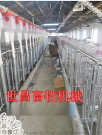 自动化喂食设备猪场设计料线