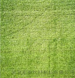 围挡专用草坪_围挡专用草坪材质_昆明