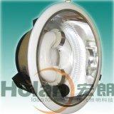 低頻無極燈油站燈(HLG425)