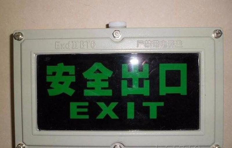 BAYD81防爆安全出口指示灯