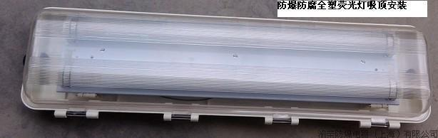 四川成都防爆防腐全塑节能荧光灯价格