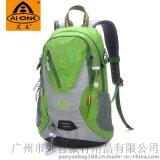 艾王AIONE2014新款20L骑行包户外旅行背包