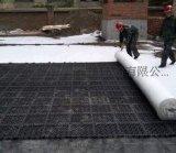 江西760--1600g/㎡蓄'排水板