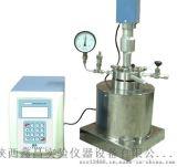 供应超声波高压高温恒温釜生产厂家
