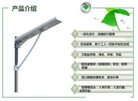 新型锂电池一体化太阳能路灯农村路灯6米