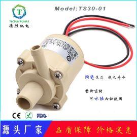TS3001净水机果汁机无刷直流水泵