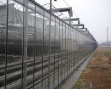 玻璃智慧溫室