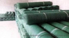 塑料平网 农场养殖网 塑料菱形网 养鹅网 养鸭网 养鸡网