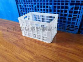 水果筐530*360*300蔬菜筐白色塑料周转筐