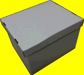 高质量畅销的1片和2片的瓦楞运输文件箱