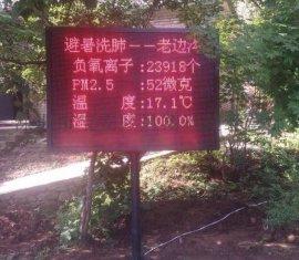 广东韶关负离子空气质量监测系统 园林负氧离子检测仪 批发价