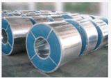 供應冷卻塔外殼專用  G235  720克無花鍍鋅