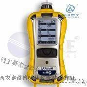 MultiRAE 2 有毒有害气体检测仪