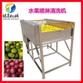 果蔬清洗机,水果毛刷清洗机