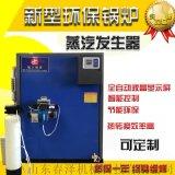 燃油蒸汽发生器 蒸汽发生器