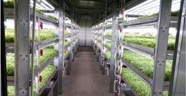 新型智能玻璃保温箱温室 青州泉瑞温室生产