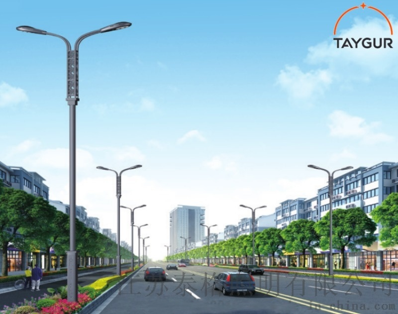 泰格LED照明灯、6米路灯杆、单臂路灯、高低路灯