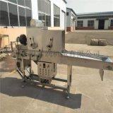 上粉机生产 藕条粘粉机可搭接裹浆机 食品涂裹生产线