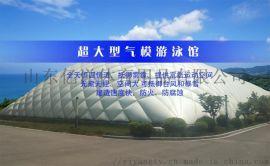 億洋超大型氣模遊泳館:大型體育場館的優選產品