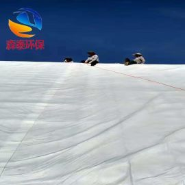 350g土工布 优质土工布 防渗土工布 长丝土工布生产厂家 无纺布