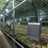 供应养鸡水暖锅炉价格