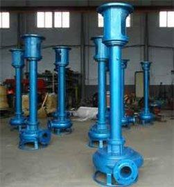 耐磨立式清淤泵/河道淤泥泵/清淤工程队的  厂家