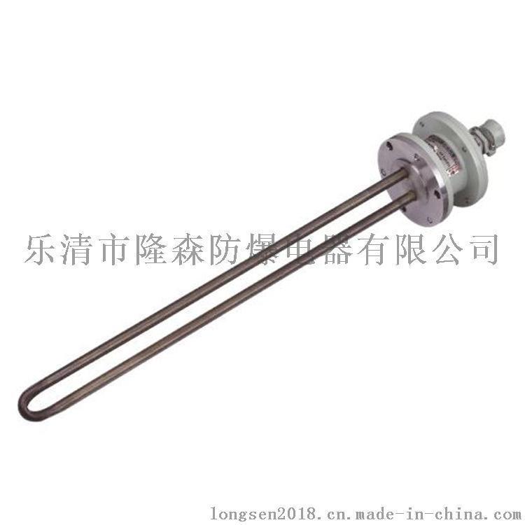 【隆森防爆】BDR52防爆电加热器 防爆加热器