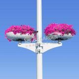 供应灯杆花架 灯杆立体绿化花盆 多种造型