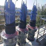 铸铁潜水轴流泵 大流量铸铁潜水轴流泵