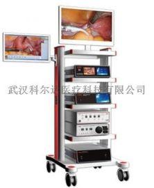 腹腔镜,宫腹腔镜检查系统