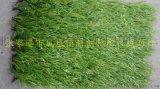 新型草坪無地面要求人造草坪綠色環保地墊