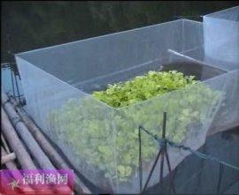 3*2*1.2米黄鳝养殖网箱批发